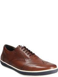 Floris van Bommel Men's shoes 19036/38