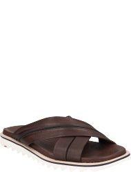 LLOYD Men's shoes EDVINO
