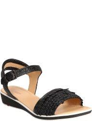 LLOYD Women's shoes 19-667-04