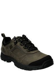 Timberland Men's shoes Mt. Major Low Leather