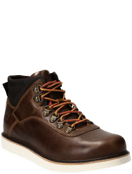Timberland Men's shoes Newmarket Archive Low Boot