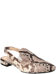 AGL - Attilio Giusti Leombruni womens-shoes D555004PHK6817D316