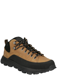 Timberland Men's shoes Treeline Low Leather