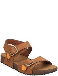 Timberland children-shoes #A427Q A4339