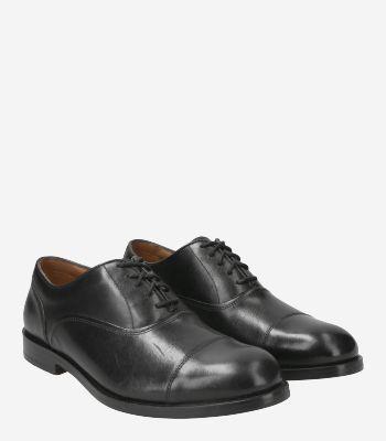 Clarks Men's shoes COLLING BOSS
