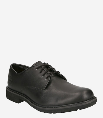 Timberland Men's shoes STORMBUCK OXFORD