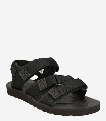 Timberland Men's shoes PIERCE POINT