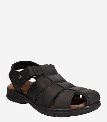 Panama Jack Men's shoes Sauron