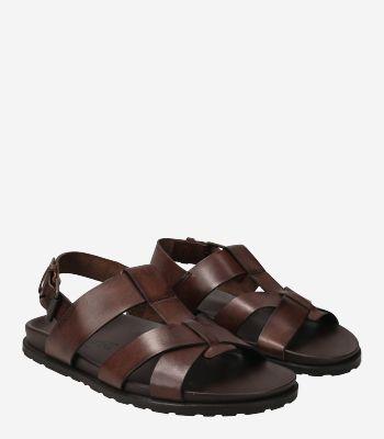 Emozioni Men's shoes M6856