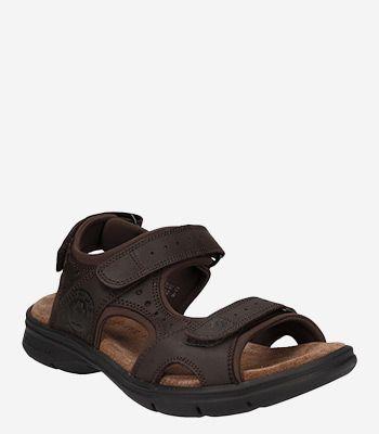 Panama Jack Men's shoes Salton