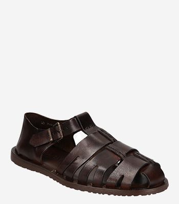 Emozioni Men's shoes M5912