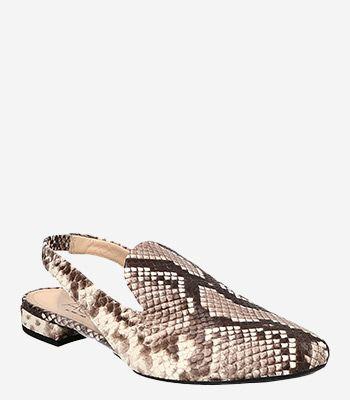 AGL - Attilio Giusti Leombruni Women's shoes D555004PHK6817D316