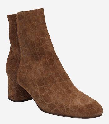 AGL - Attilio Giusti Leombruni Women's shoes D140562PURICKY0602