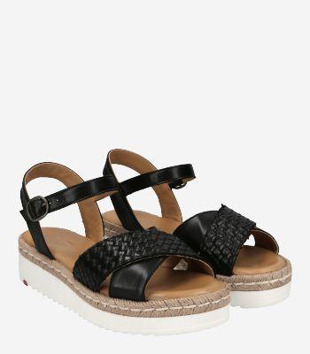 Lloyd Women's shoes 11-603-00