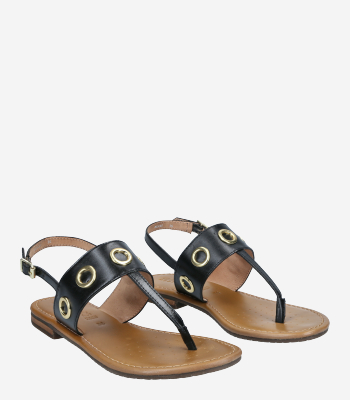 GEOX Women's shoes SOZY