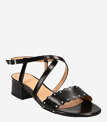 Perlato Women's shoes 11506