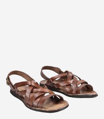 Brador Women's shoes 34-506