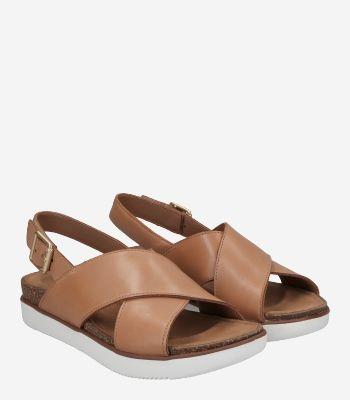 Clarks Women's shoes Elayne Cross 26159233