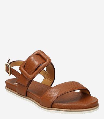 Trumans Women's shoes 9164 104