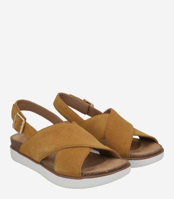 Clarks Women's shoes Elayne Cross 26159232