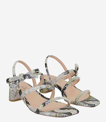AGL - Attilio Giusti Leombruni Women's shoes D665002PCTROPY0234