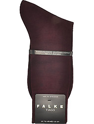 Falke Men's clothes 14662/8596